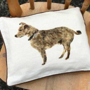 30x40 Cushions